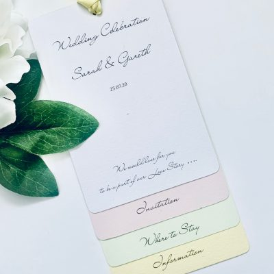 Pastel colours luggage Tag style invitation